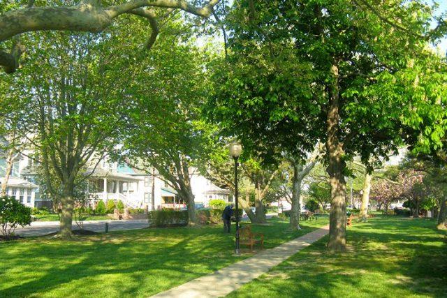 Wilibraham Park